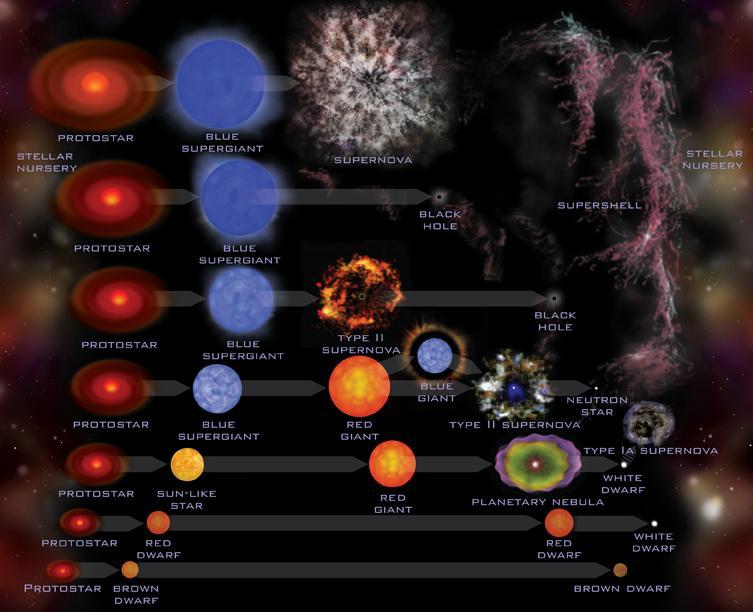 El Universo Tipos De Estrellas